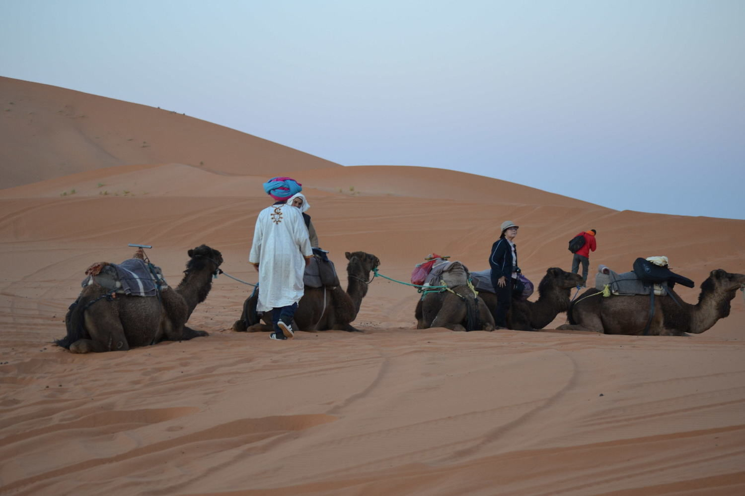 Camels route, Morocco
