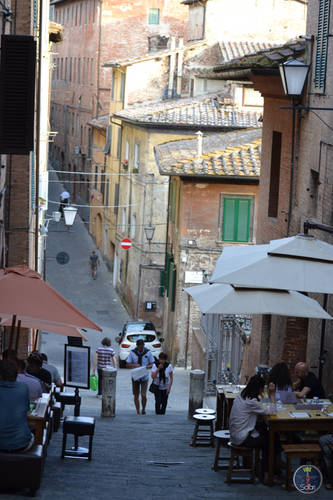 Nature, Landscape and architecture of Siena