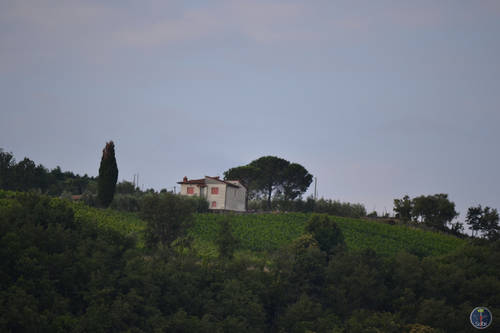 Nature, Landscape and architecture of Chianti