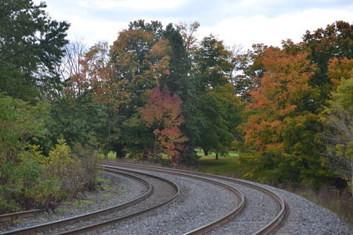 Train Track at Oak Ridges Forest and the Fall Season