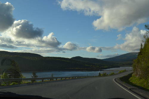 Roads by the Seaside with Trees & Mountains in Rocky Harbour, Newfoundland, Landscape