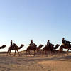 Camels route, Desert