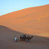 Camels & a Person in the Desert of Morocco, Travel