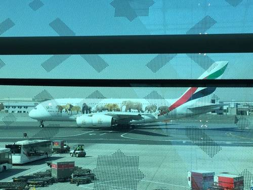 Plane on Runway in Dubai Airport