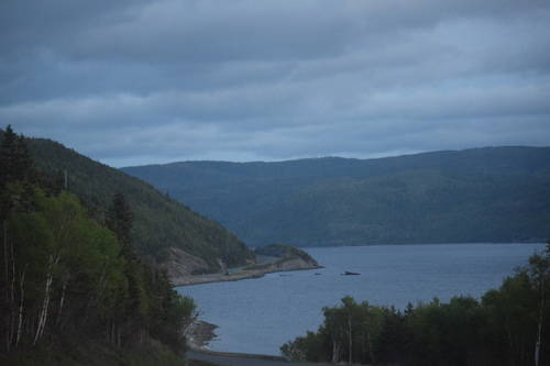 Mountains & Trees at Rocky Harbour, Newfoundland & Labrador, Canada, Landscape